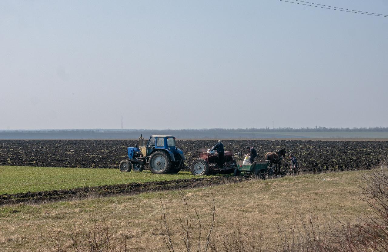 Трактор ЮМЗ-6* на весенне-полевых работах. Одесская область, Раздельнянский район, с. Наливайково-Второе