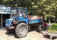 Самоходное шасси Т-16МГ-У1 #00862Т АК. Республика Крым, г.о. Ялта, пос. Никита, Никитский ботанический сад