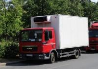 Рефрежираторный фургон на шасси MAN TGL 12.180 #А065СМ198. г. Санкт-Петербург, пр. Солидарности