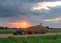 Трактор Т-40 на погрузке сена. Украина, Волынская область, с. Самары
